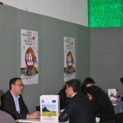 Borsa 2012