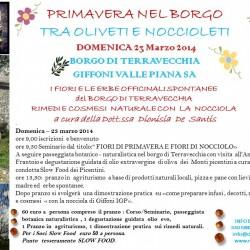 locandina primavera 23 marzo 2014