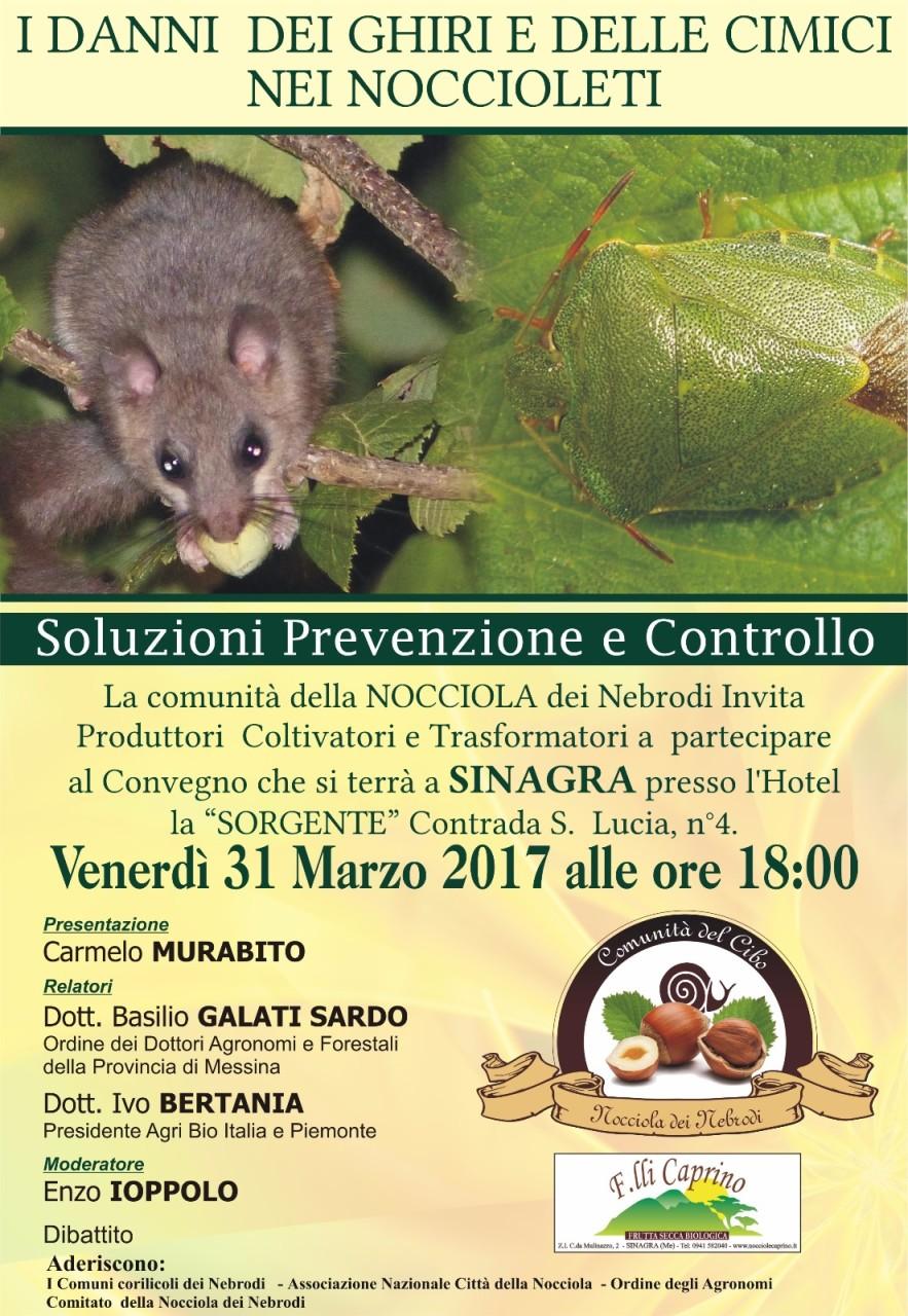 sicilia 31 marzo