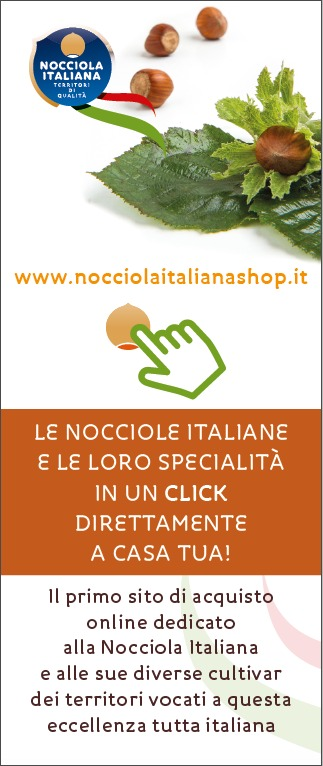 lgo nocciola shop