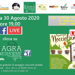 noccioliamo on line