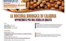 locandina-calabria--223x300